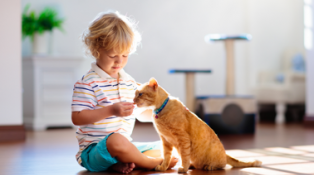 A boy sits cross-legged on the floor and gives a cat a treat.